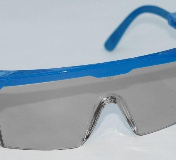 Hornets? Safety Glasses
